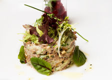 Fish tartare Royalty Free Stock Photo