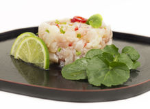 Fish tartare Stock Image