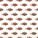 Fish texture. Color seamless pattern. Stock Photos