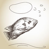Fish with Thought Bubble Stock Photos