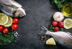Fish time Stock Photography
