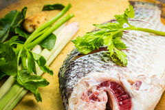 Fish to prepare food. Stock Images