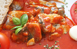 Fish. In tomato sauce on a plate royalty free stock photos