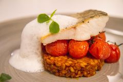 Fish with tomatoes Stock Images