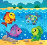 Fish topic image 4 Royalty Free Stock Images