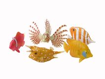 Fish toys Stock Images