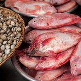 Fish at traditional asian seafood marketplace. Raw fresh seafood, fish and clams for sale at asian food market Royalty Free Stock Images