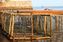 Fish Trap Stock Photography