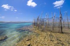 Fish traps on Brazilian reef Stock Image