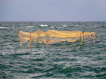 Fish traps. In the sea. Shot from Marea Neagra, Black Sea Royalty Free Stock Images