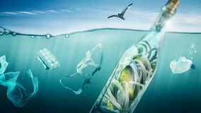 Fish travels in a bottle over the sea. Fish protects itself in a bottle from environmental pollution Stock Image