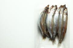 Fish in tray scene. royalty free stock photos