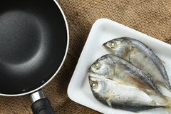 Fish in tray scene. The short bodied mackerel fish put on the food grade foam tray among sack background in the scene appear the pan also represent the fish and Stock Photography