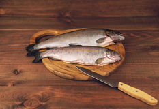 Fish trout on the board. Fresh raw fish trout is two pieces on the board for cutting food on a wooden table in rustic style near the knife Royalty Free Stock Photos
