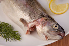 Fish trout meal plate Stock Photography
