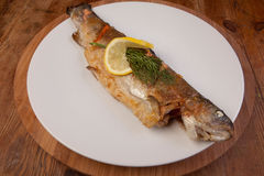 Fish trout meal plate Stock Image