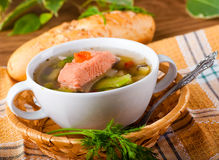 Fish a trout soup Stock Images