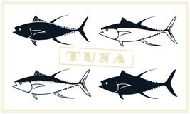 Fish tuna. Vector stylized icons. A stylized image of a tuna fish done in retro style Stock Photography