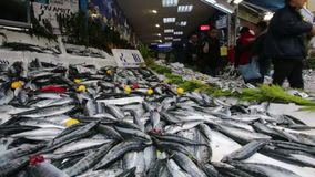 Fish Turkish market street. Istanbul, Turkey - November 15, 2014: Sellers are offering Horse Mackerel fish to the tourists at a Turkish market street stock footage