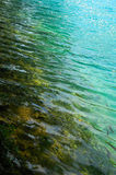 Fish in turquoise clear water. Near yellow shore Stock Image