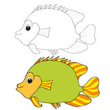 Fish two individuals. One colored by a second black outline Stock Photos