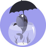 Fish with umbrella. Funny cartoon fish in a fish bowl with an umbrella, vector illustration, no transparencies Stock Image