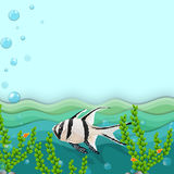 A fish under the sea. Illustration of a fish under the sea Royalty Free Stock Image