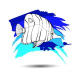 Fish  underwater sea ocean illustration marine. Fish  underwater sea ocean illustration Royalty Free Stock Images