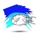 Fish  underwater sea ocean illustration marine. Fish  underwater sea ocean illustration Stock Photography