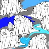 Fish  underwater sea ocean illustration marine Royalty Free Stock Image