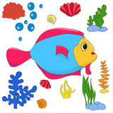 Fish underwater world. Shells corals Royalty Free Illustration