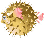 Fish-urchin. Isolated on white. EPS 8 Stock Photos