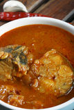 Fish Varuthuracha curry - Kerala Style fish curry Royalty Free Stock Image