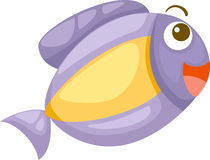 Fish vector. Fish illustration of isolated on white background Stock Image