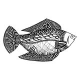 Fish vector, fish zen tangle and zen doodle. Fish coloring. Fish tattoo. Black and white. Stock Photos