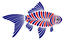 Fish vector illustration design. Isolated on white Royalty Free Stock Photography