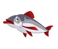 Fish. Vector image of funny cartoon sad fish Stock Photography