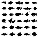 Fish vector silhouettes black on white. Set of marine animals in monochrome style illustration Stock Images