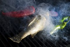 Fish and vegetable grill Royalty Free Stock Photo
