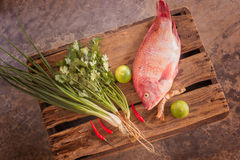 Fish and vegetable Stock Photography