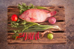 Fish and vegetable Stock Image