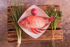 Fish and vegetable Royalty Free Stock Photos