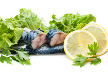 Fish and vegetables Royalty Free Stock Image