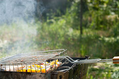 Fish with vegetables is cooked on the grill in the garden Stock Photo