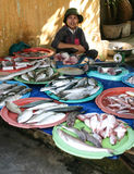 Fish vendor in vietnam Royalty Free Stock Photography
