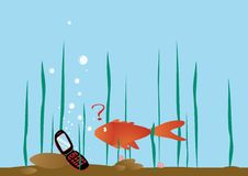 The fish was finding phone. Funny picture The fish was finding the mobile phone Royalty Free Stock Photos