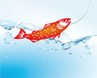 Fish in water with fishing line. Bright orange or red fish in water near a fishing line with a hook Stock Photography