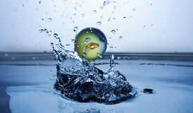 Fish in water globe splash. Fish globe falling in water making nice waves and droplets Royalty Free Stock Images