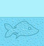 Fish water Royalty Free Stock Photo