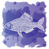 Fish_watercolor 皇族释放例证